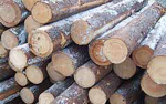 Timber from sustainable sources