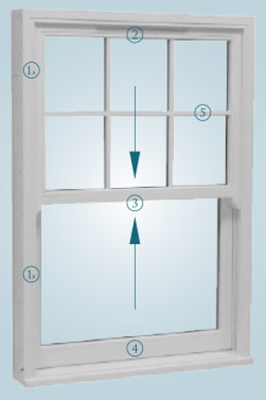 Vertical Sliding Sash and Case